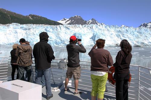 Daily Glacier and Wildlife Tours (photo credit Stan Stephens Glacier Wildlife Cruises)