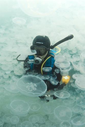 Scuba Diving in Port Fidalgo (photo credit: Ravencroft Lodge)