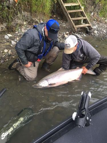 Guide Jon Hulcher Catch and Releasing a King Salmon