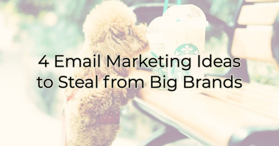 Image for 4 Email Marketing Ideas to Steal from Big Brands for your Livingston Parish Business