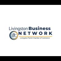 Business Network Meeting   Meet, Learn, Grow
