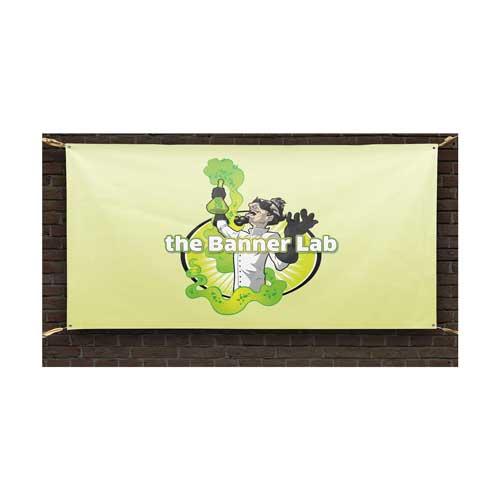 The Banner Lab Custom Logo Design