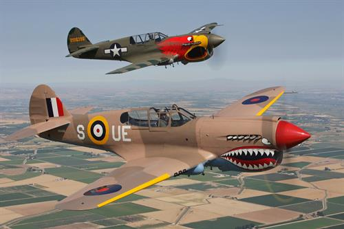 P-40N Parrot Head and P-40E Sneak Attack