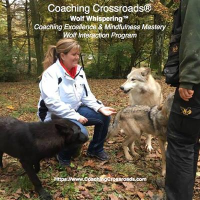 Coaching Crossroads, LLC