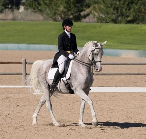 Whisper Creek Dressage Grand Prix Horse & Trainer - Spinnaker & Meghan Slaughter