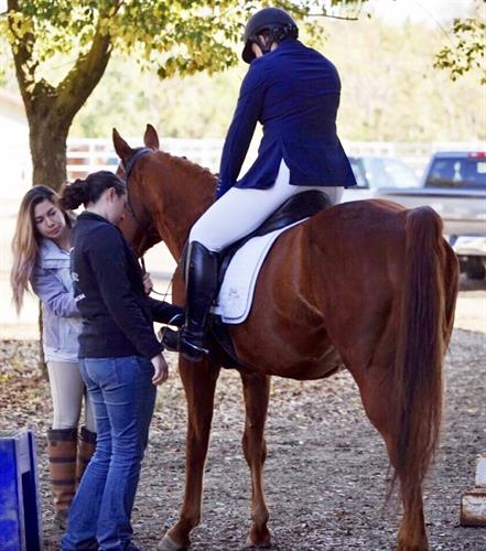 Whisper Creek Dressage - Training and Showing