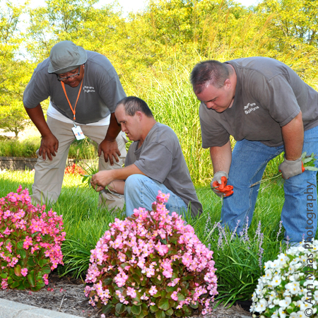 Gallery Image Lawncare-Group.JPG