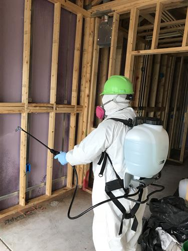 Mold removal and remediation: Our highly trained, IICRC certified technicians ensure complete customer satisfaction through precision and accuracy.