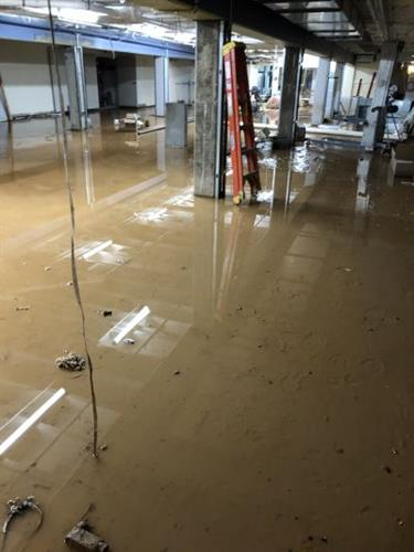 Commercial water damage: The basement of a large, commercial building flooded, causing excessive damage and issue. We stepped in to remove the water, as well as dry then disinfect the affected areas.