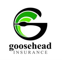 Would you like to eliminate that high hurricane deductible on your home insurance?  Goosehead Insurance has you covered!