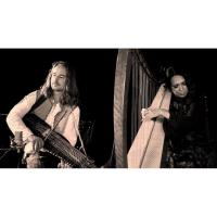 Celtic Harps, Rare Instruments & Wondrous Stories with Lisa Lynne & Aryeh Frankfurter