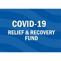 Summary of HR 133 COVID Relief Bill January 2021