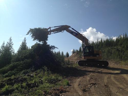 Building slash piles
