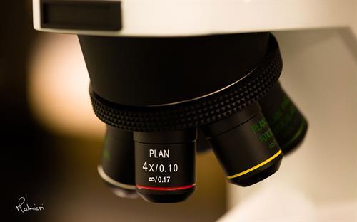 Gallery Image microscope.jpg