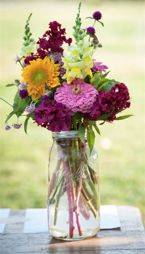Harvest Bell flowers