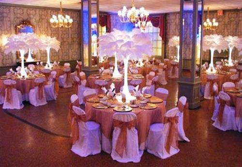 All Occasion Rentals is your Party Rental Place
