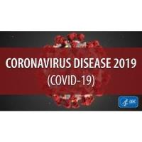 Coronavirus (COVID-19): Facts, Not Fear