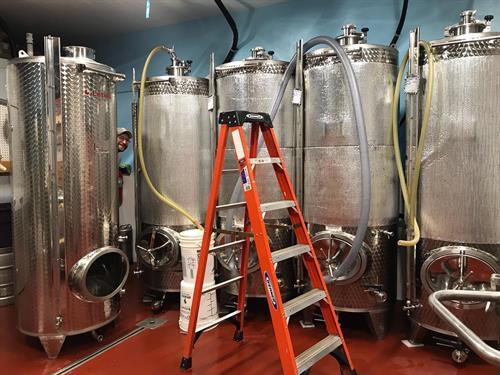 7 Barrel brew system