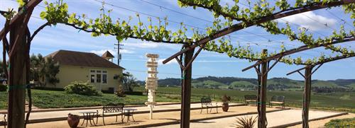 View of the Tasting Room from our pergola area
