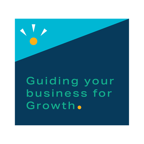 Guiding your business for Growth