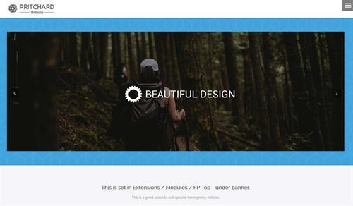 Custom Website Template
