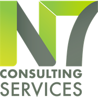 N7 CONSULTING SERVICES LLC