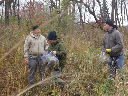 Ancient Oak Volunteers spread native seed at the Oak Ridge Marsh Nature Park, 500 Lions Drive in Lake zurich
