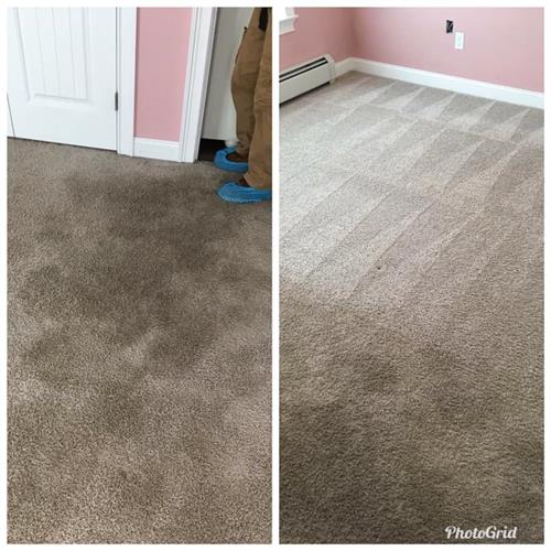 Carpet Cleaning Hadley, Ma