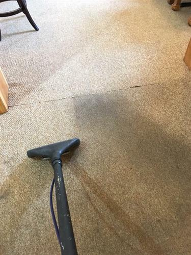 Commercial Carpet Cleaning Northampton, Ma, 01060
