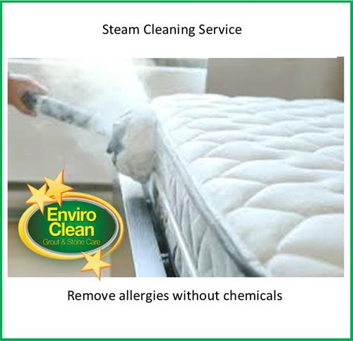 Do you have sensitivities to chemicals? We offer a DRY steam cleaning service.
