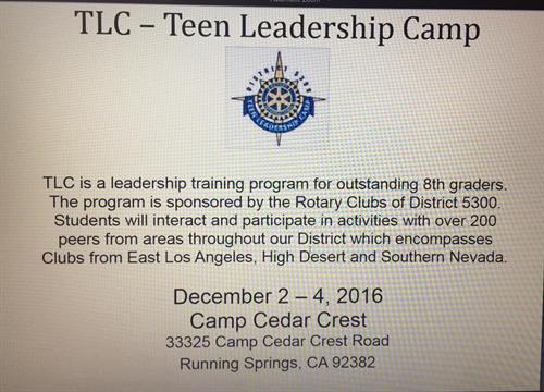 What is Teen Leadership Camp
