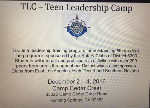 What is Teen Leadership Camp