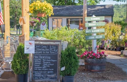 Our farm market has great tasting food from our fields and our farm kitchen & bakery.