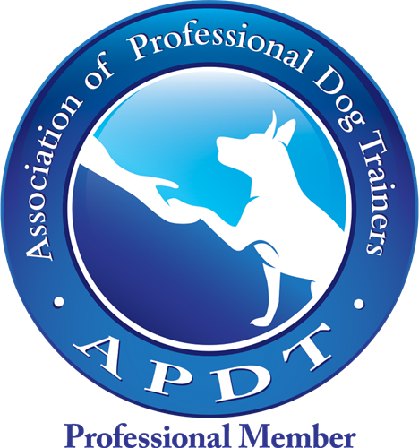 Gallery Image APDT_Prof_COLOR.png