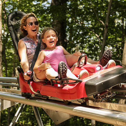 Gallery Image Mountain_Coaster.png