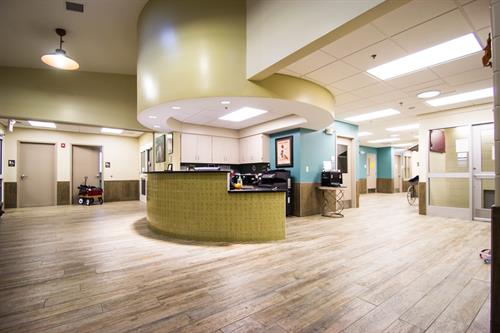Medical Veterinary Lobby