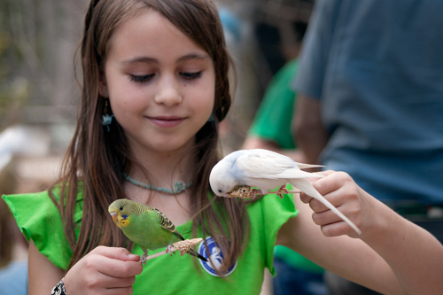 A young visitor feeds parakeets in the Landing Zone