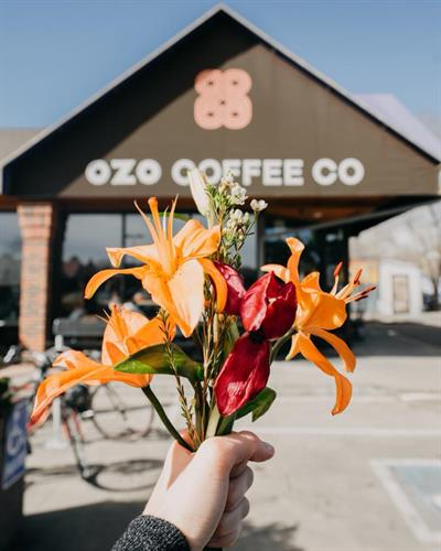 OZO Coffee Arapahoe (Original Location)