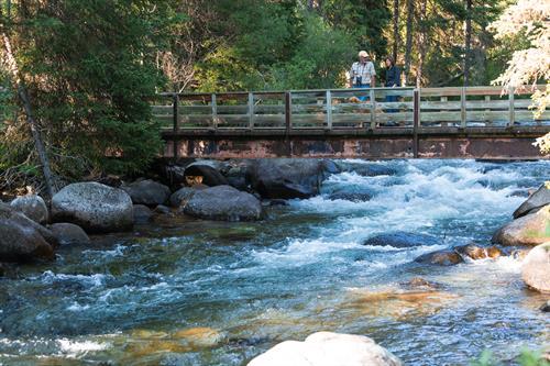 Pacific Northwest Resilient Land Trust Initiative