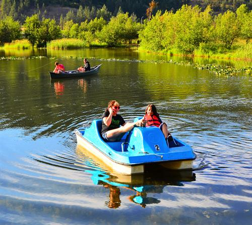 We offer complimentary use of pedal boats and canoes
