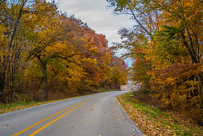 Gallery Image country_road_fall_foilage-S.jpg