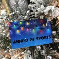 World of Sports - South Boston