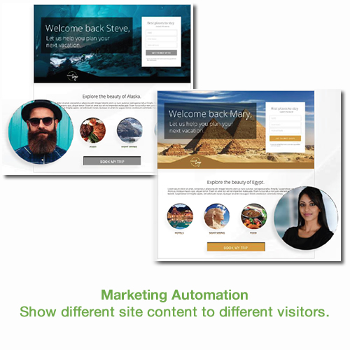 Show dynamic content with marketing automation