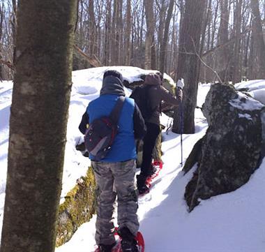 Snowsheing Tours