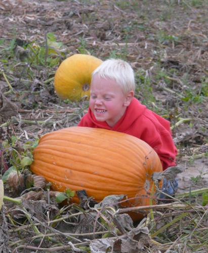 Visiting local pumpkin patch