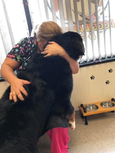 We don't just work here we love our dogs. Kim & Bear!