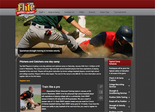 Top Ball Players website and logo design