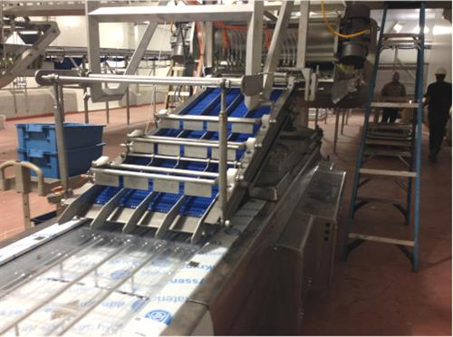 Machine upgrading for food packaging machine.