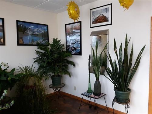 Plants 6.0 pH