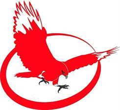 Red Hawk Technical Writing, LLC